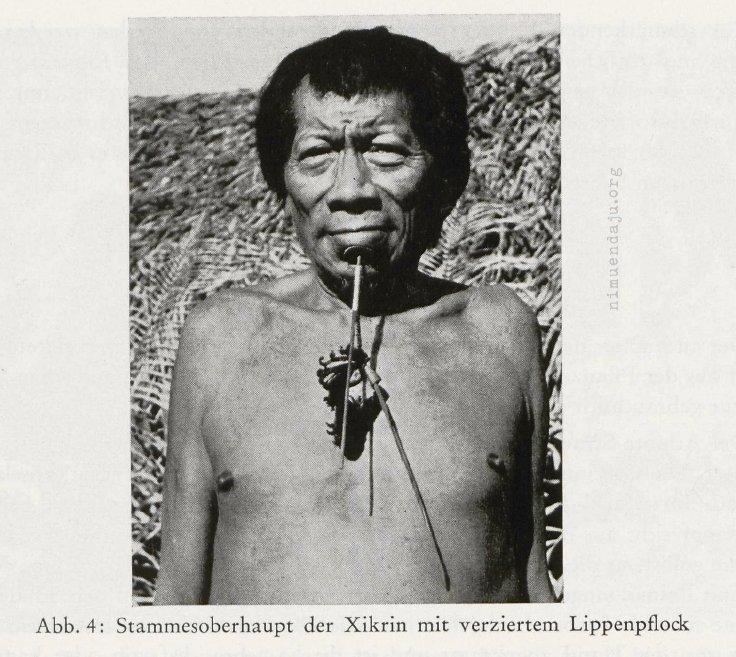 Die materielle Kultur der Xikrin, Zentralbrasilien (Hartmann1965)
